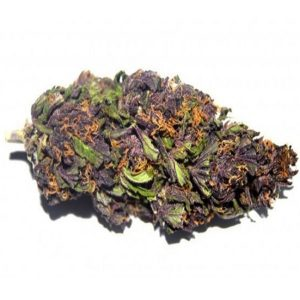 purple_haze